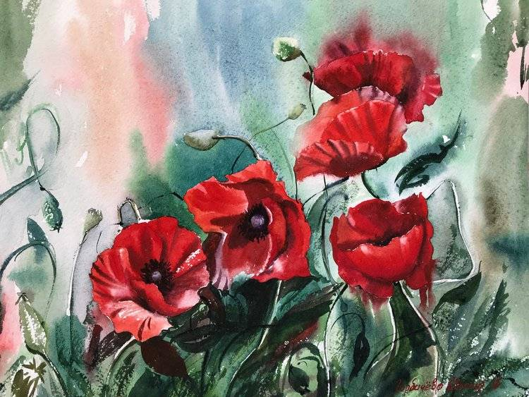 GrowingPoppies Eugenia Gorbacheva